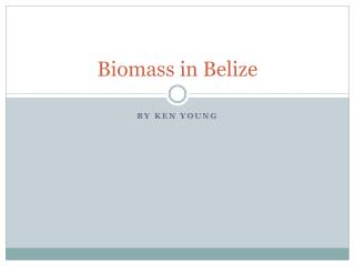 Biomass in Belize