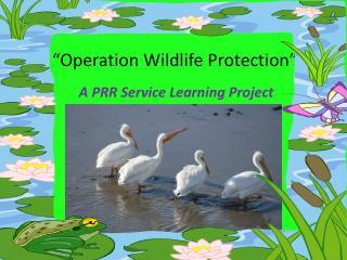 """Operation Wildlife Protection"""