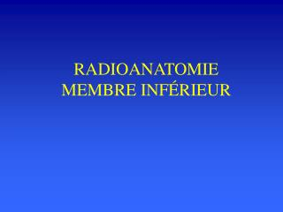 RADIOANATOMIE MEMBRE INF RIEUR