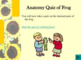 Anatomy Quiz of Frog