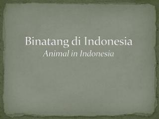 Binatang  di Indonesia Animal in Indonesia