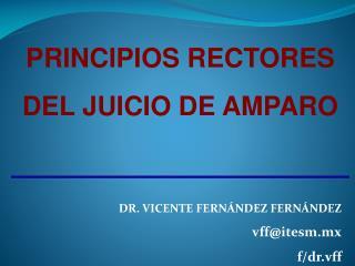 PRINCIPIOS RECTORES DEL JUICIO DE AMPARO DR .  VICENTE FERNÁNDEZ  FERNÁNDEZ vff@itesm.mx f/ dr.vff