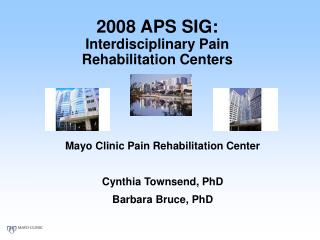 2008 APS SIG:  Interdisciplinary Pain  Rehabilitation Centers