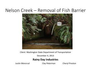 Nelson Creek – Removal of Fish Barrier