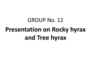 GROUP No. 12 Presentation on Rocky hyrax and Tree hyrax