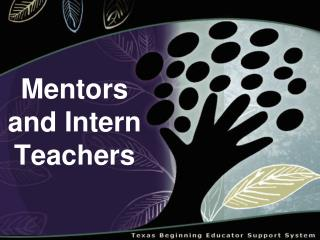 Mentors and Intern Teachers