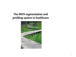 The PATH segmentation and profiling system in healthcare