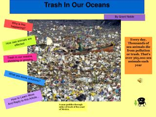 Trash In Our Oceans