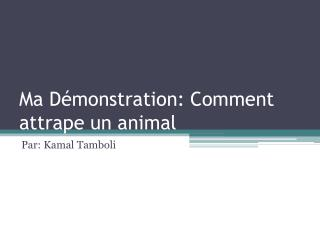 Ma Démonstration: Comment attrape un animal