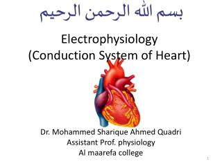 Electrophysiology  ( Conduction System of Heart)