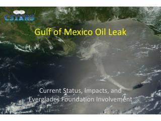 Gulf of Mexico Oil Leak