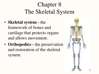 Chapter 8 The Skeletal System