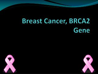 Breast Cancer, BRCA2 Gene