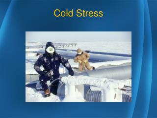 Cold Stress