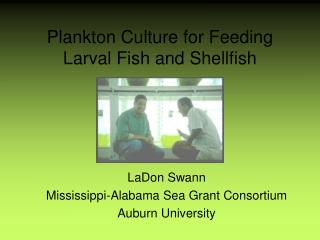 Plankton Culture for Feeding Larval Fish and Shellfish