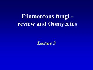 Filamentous fungi - review and Oomycetes