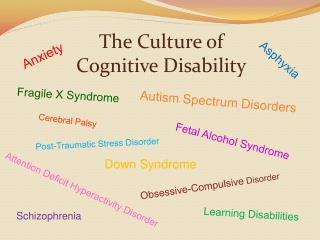 The Culture of  Cognitive Disability