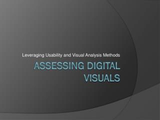 Assessing Digital visuals