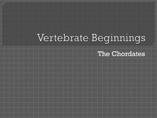 Vertebrate Beginnings