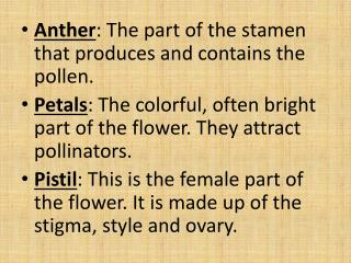 Anther :  The part of the stamen that produces and contains the  pollen.