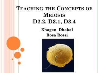 Teaching the Concepts of Meiosis D2.2, D3.1, D3.4