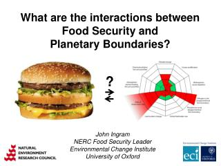 What are the interactions between Food Security and Planetary  Boundaries?