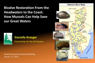 Bivalve Restoration From the Headwaters to the Coast:  How Mussels Can Help Save