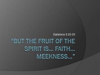 """But the Fruit of the Spirit is… Faith… Meekness…"""