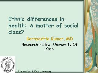 Ethnic differences in health: A matter of social class?