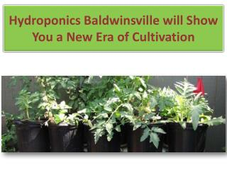 HHydroponics Baldwinsville will Show You a New Era of Cultiv
