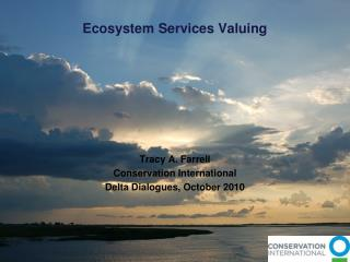 Ecosystem Services Valuing