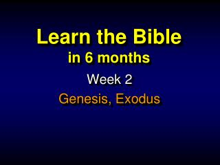 Learn the Bible in  6 months