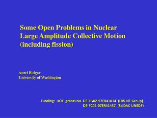 Some Open Problems in Nuclear  Large Amplitude Collective Motion (including fission)