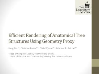 Efficient  Rendering of Anatomical Tree Structures Using Geometry Proxy