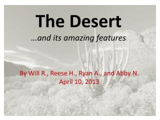 The Desert …and its amazing features