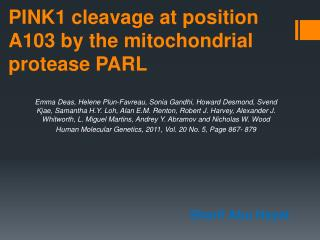 PINK1 cleavage at position A103 by the mitochondrial protease PARL
