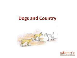 Dogs and Country