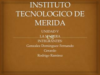 INSTITUTO TECNOLOGICO DE MERIDA