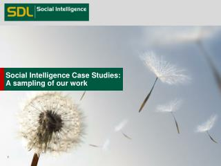 Social Intelligence Case  Studies: A sampling of our work