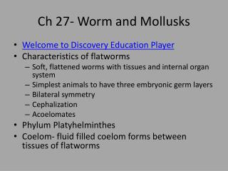 Ch 27- Worm and Mollusks