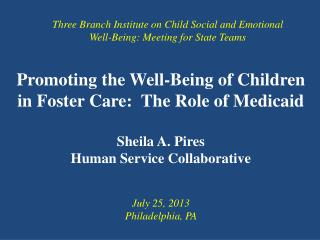 Promoting the Well-Being of Children in Foster Care:  The Role of Medicaid Sheila A. Pires