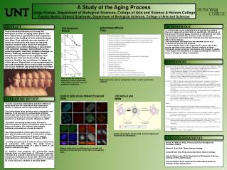 A Study of the Aging Process