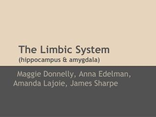 The Limbic System (hippocampus & amygdala)