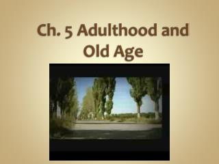 Ch. 5 Adulthood and Old Age