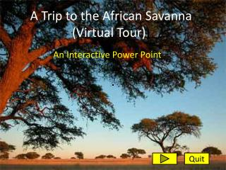 A Trip to the African Savanna (Virtual Tour) )