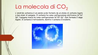 La molecola di CO 2