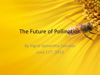 The Future of Pollination