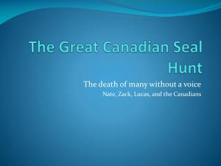 The Great Canadian Seal Hunt