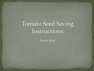 Tomato Seed Saving Instructions