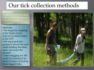 Our tick collection methods